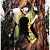 tree doorway #3